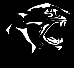 panther b